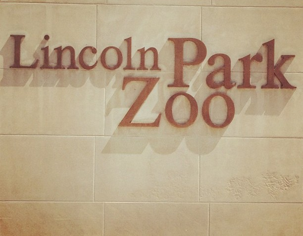 [chicagogram] Lincoln Park Zoo on a sunny day.