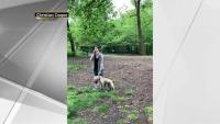 Presionan para que presenten cargos contra la protagonista de video viral en Central Park