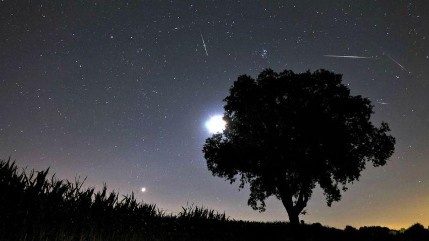 TLMD-lluvia-de-meteoros-estrellas-fugaces-perseidas-shutterstock_121353094