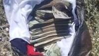 ¡Vaya sorpresa! Arrojan $21,000 dólares durante una persecución en Sonora
