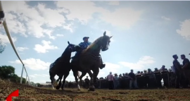 tlmd_carrera_poder_caballos