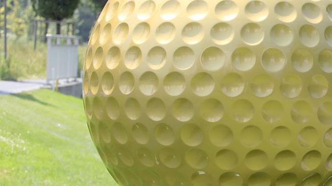tlmd_golfballgi