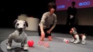 El perro-robot que ahora puede patrullar tu casa