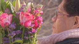 Solemne festejo y honras a la Virgen de Guadalupe en IL