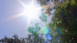 Cómo prevenir tragedias por el calor extremo y humedad