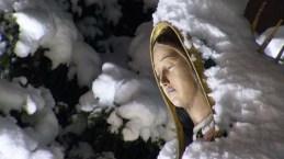 Fervor por la Virgen de Guadalupe en el santuario de IL