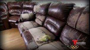 Llueven quejas por muebles descarapelados en Chicago