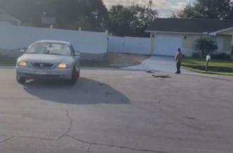 Perro maneja el carro de su dueño durante una hora