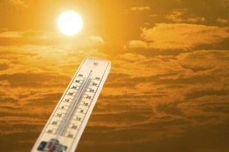 Calor extremo ya se siente en Chicago
