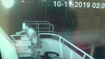 Ladrón roba desnudo en yates