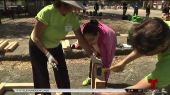 Voluntarios revitalizan un parque en el sur de Chicago