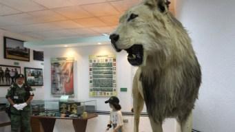Museo del Enervante: ejército exhibe lucha vs drogas