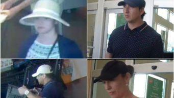 Palos Park: policía los busca por robar tarjetas de crédito