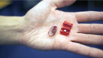 Crean robot ingerible capaz de cerrar heridas