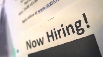 ¿Buscas empleo? organización NLEN te puede ayudar