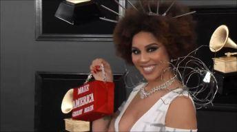Cantante se aparece en los Grammy vestida como el muro de Trump