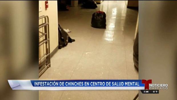 Chiches y basura causa desalojo de centro de salud mental en IL