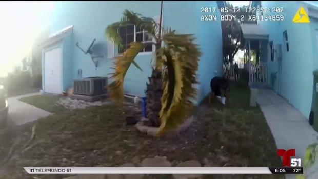 [TLMD - MIA] Policías investigados por exceso de brutalidad policial