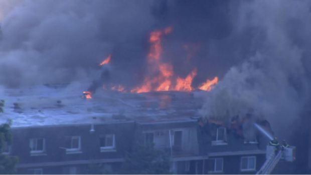 Infierno en Prospect Heights: fuego arrasa y consume todo a su paso