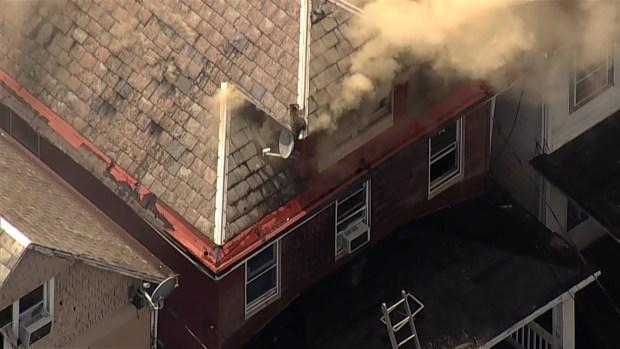 Mapache escapa de casa en llamas en Nueva Jersey
