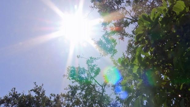 Cómo prevenir tragedias por el calor extremo