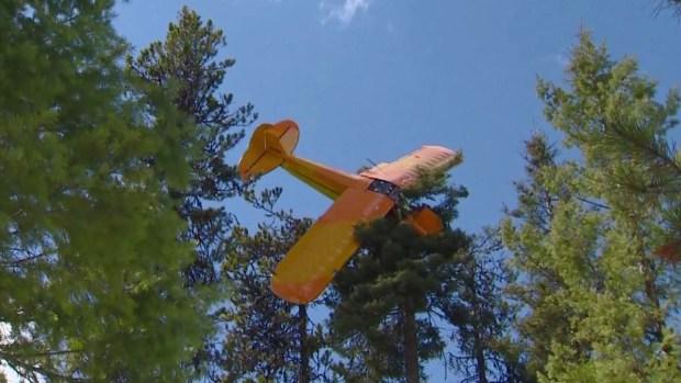 Rescatan a piloto de avioneta que se estrelló contra árbol