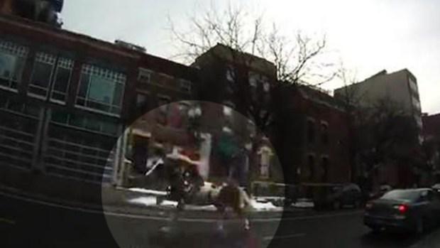 Video: Escapa caballo en las calles de Chicago