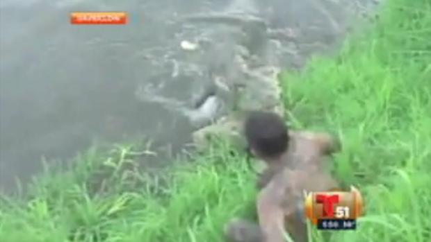 Video: Atacado por cocodrilo hambriento