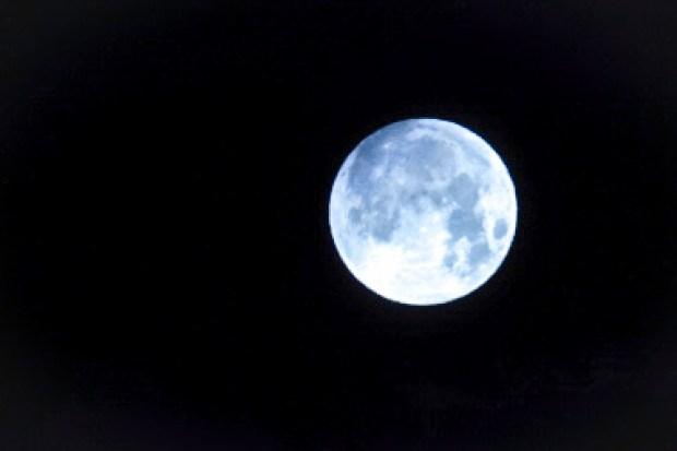 Así se vio el eclipse de superluna azul de sangre en IL