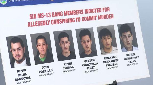 Policía: MS-13 en Long Island habría recibido órdenes desde El Salvador