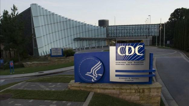 CDC: posible vínculo entre virus del Zika y microcefalia