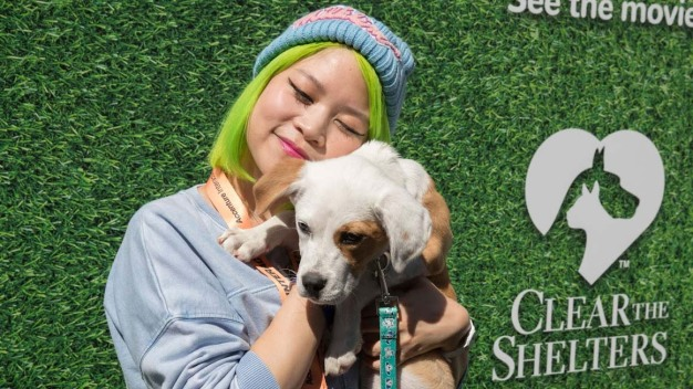 Desocupar los albergues: la campaña de adopción de mascotas llega a SXSW