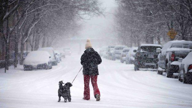 Enorme tormenta invernal paraliza el noreste de EEUU