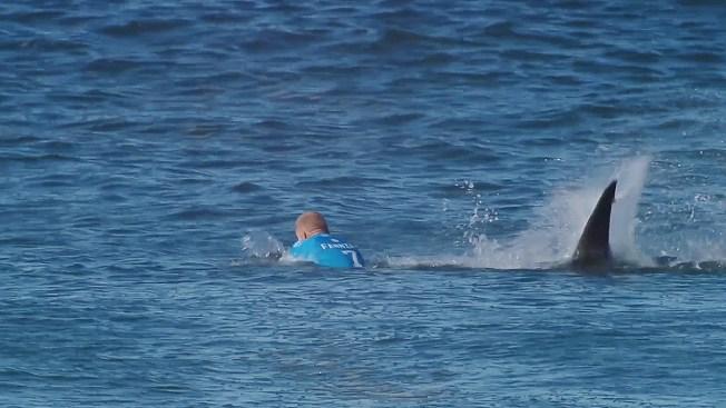 Tiburón ataca a surfista durante torneo