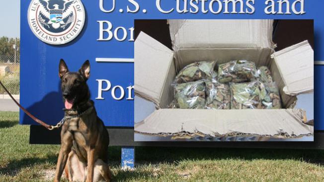 Perro descubre carga de opio en O'Hare