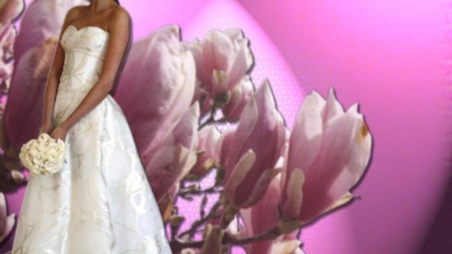 Novias contra el cáncer de mama