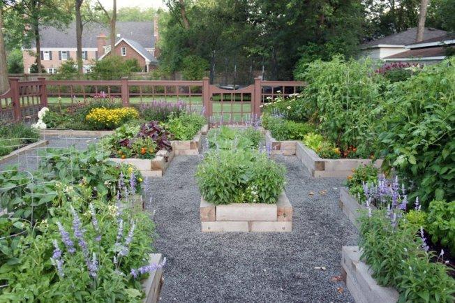 Azoteas y patios son convertidos en cultivos urbanos en EE.UU