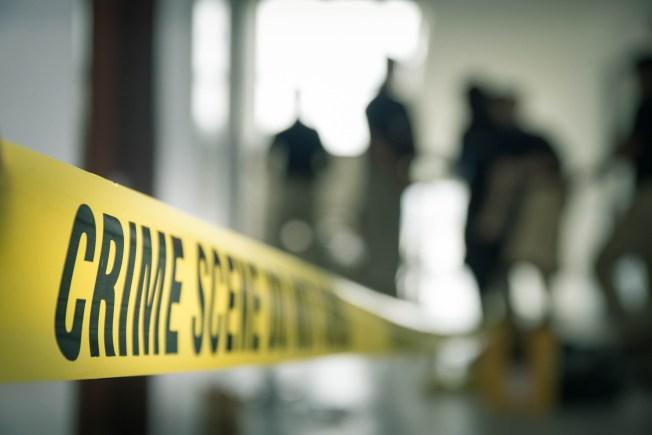 Perro pitbull ataca y asesina a una mujer de 76 años