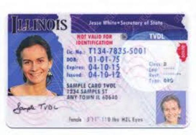 Guía para licencias en Illinois
